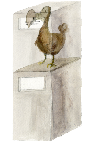 File:Dodo on Stand New.png