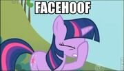 Facehoof