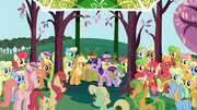Apple clan