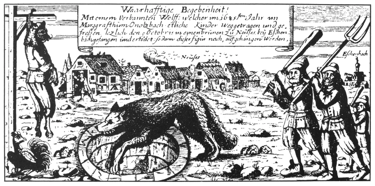 werewolf mythology wiki fandom powered by wikia