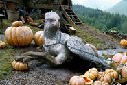 Hippogriff2