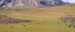 Battle of Beruna