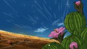 Cactus Genjutsu