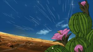 Cactus Genjutsu.png