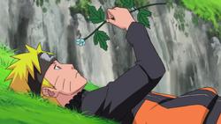 Mandra Grass