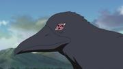 Sharingan crow