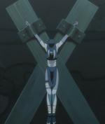 Pakura Cross