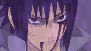 Sasuke's Ninja Way.png