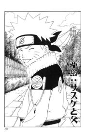 Chapter 223