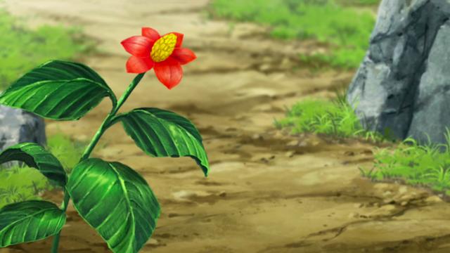 File:Mato plant.png