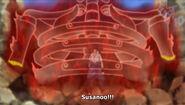 Shiro Susanoo ribcage