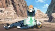 Sawaii and Ren