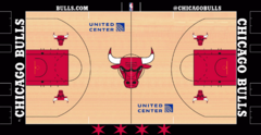 Chicago Bulls court logo