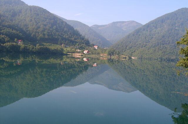 File:Jablaničko jezero blizu BRANE - 16077097.jpg