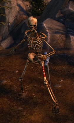 Skeleton Decrepit Skeleton
