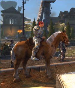 Brindle Horse