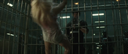 ZHarley Quinn' Trailer21