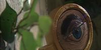 The Bifocal Monocle of One-Eyed Jack