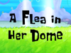A Flea in Her Dome