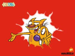 CatDog Wallpaper