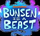 Bunsen Is a Beast
