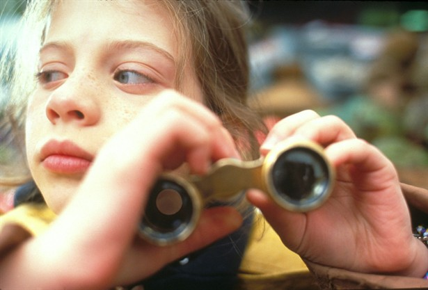 File:Harriet the Spy 12109 Medium.jpg