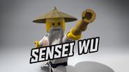 Senseiwuop