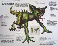 Chupacabra Unknown Book