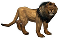 Lion (Guild Wars)