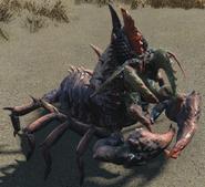 Mirelurk Hunter Fallout 4