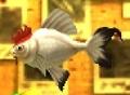 Cuccofish