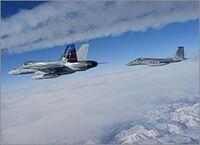 NORAD F-15 Jet Escorts