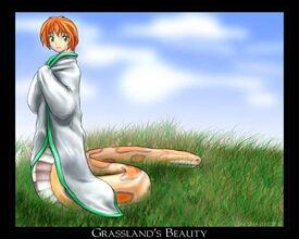 Grasslands Beauty