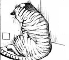 File:Neurotic cat.png