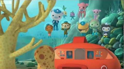 Incredible Videos On This Wiki Octonauts Wiki Fandom Powered By Wikia Easy Diy Christmas Decorations Tissureus