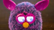 FurbyCrazy