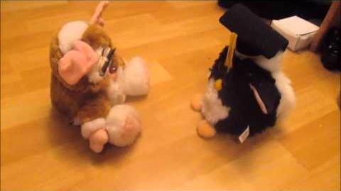 Gizmo Furby talks to Furry and E-Day and then only still with 2 Furbys