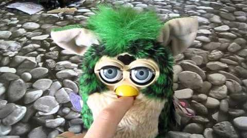 Furby Turtle collection