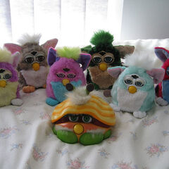 <i>Furby 1998 and Shelby</i>