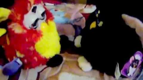 Rusty furby (series 8th) from Mexico and Black furby from Australia talking