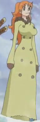 File:Nami Second PH Coat.png