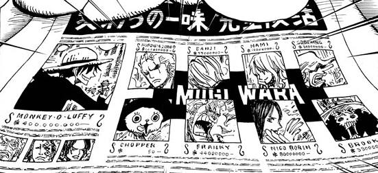 File:Timeskip Straw Hat News.png