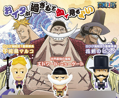 File:Chara Fortune Dec 2010 - Whitebeard Pirates.png