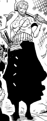 File:Zoro Punk Hazard Arc First Outfit.png