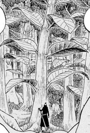 Kona Tree