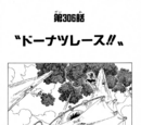 Chapter 306
