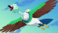 Torino Kingdom Bird