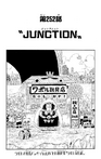 Chapter 252