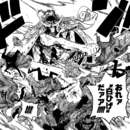 Whitebeard Fighting