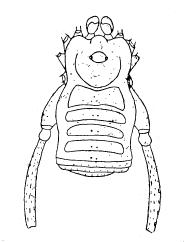 Paratricommatus inermis S&S-1954a